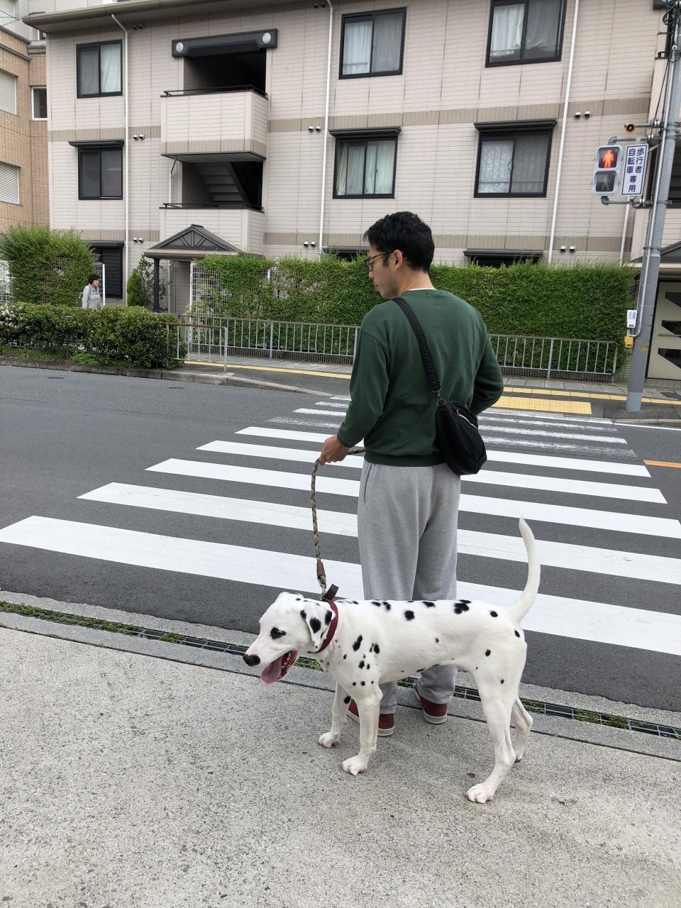 順番が来るまで病院前をお散歩