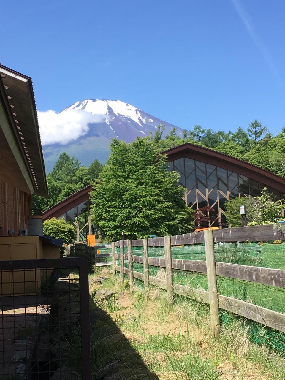woofと富士山