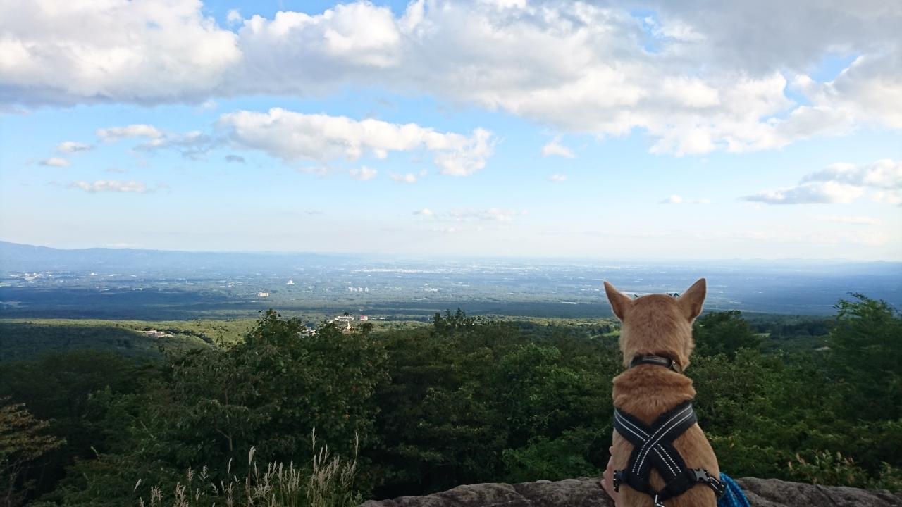 那須高原が見渡せます