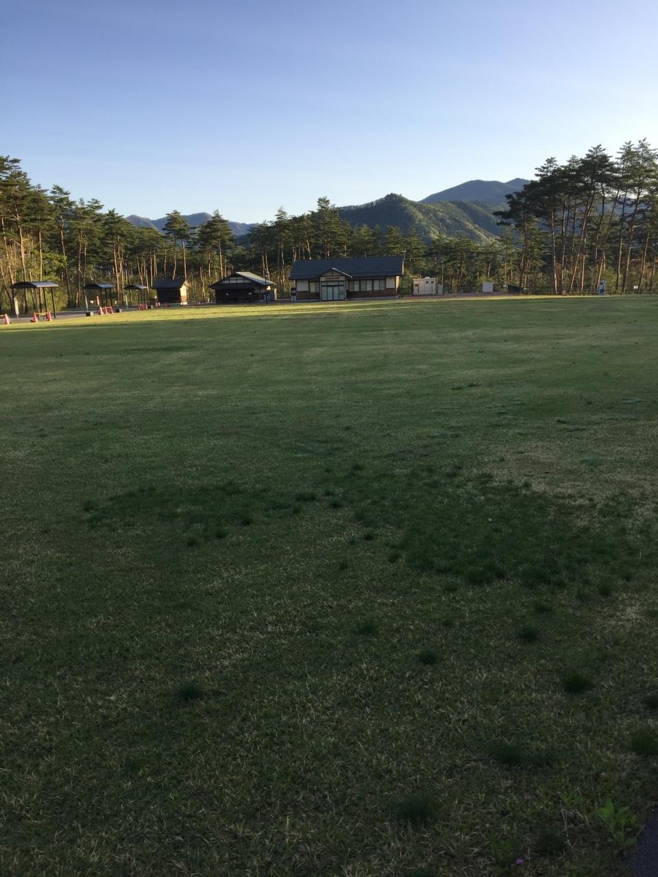 広大な芝生であそべます