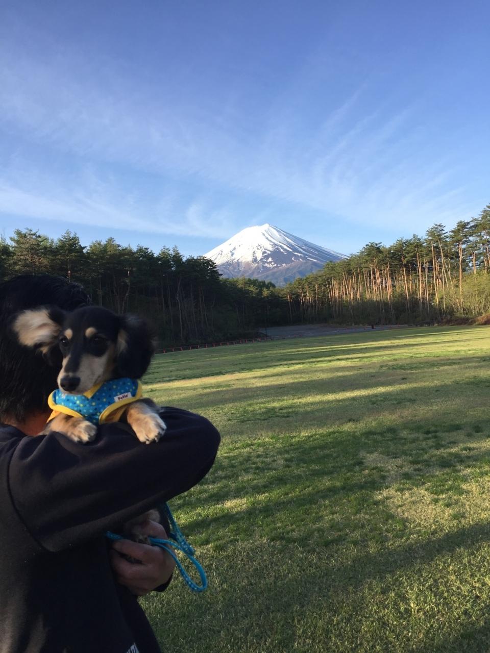 富士山が目の前です