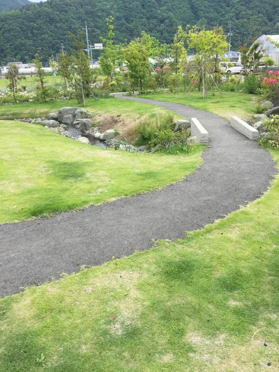 綺麗な散歩コースがあります