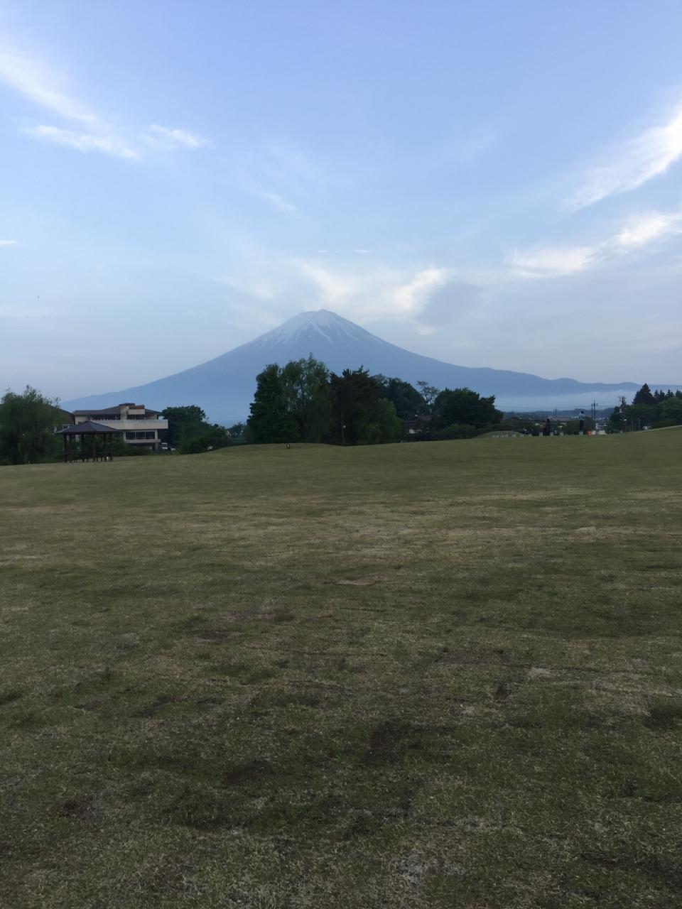 広大な芝生はワンちゃんと走ることができます