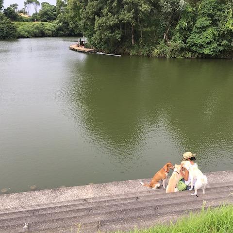 釣り堀も楽しめます🐟