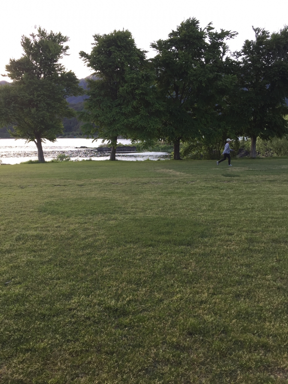 綺麗に整備されてる芝生公園