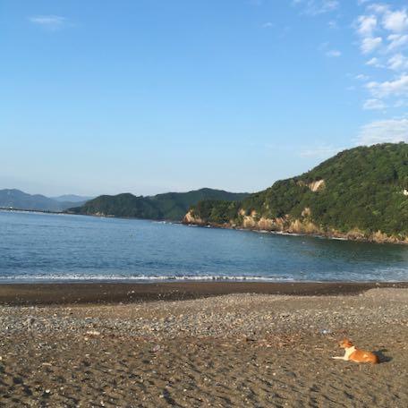 綺麗な海🌊